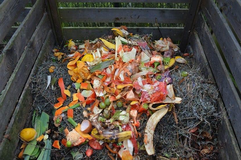 cáscaras de huevo en el compost