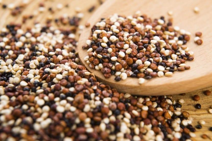 la quinoa es considerada un cereal