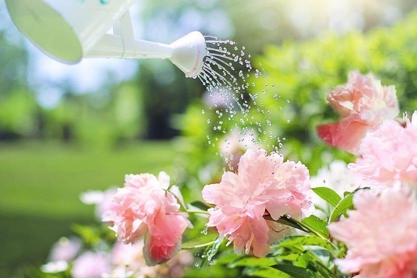 Herramientas para ahorrar agua