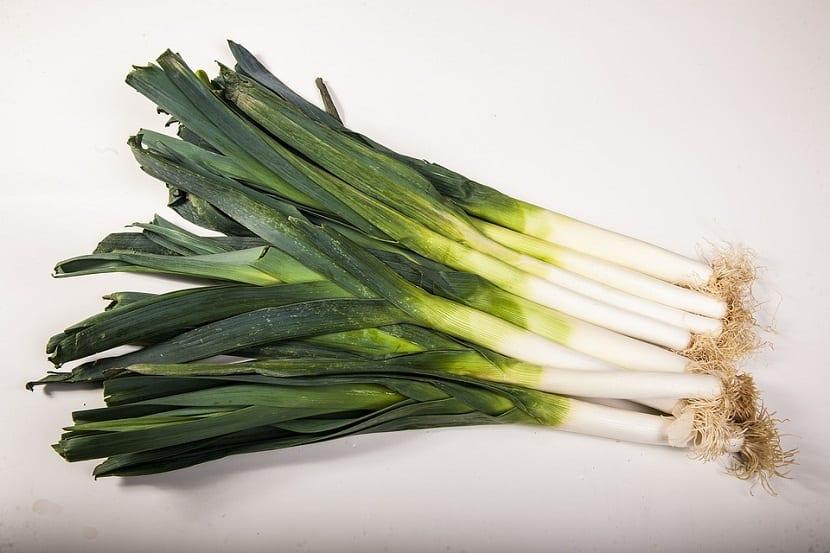 verdura con muchos beneficios