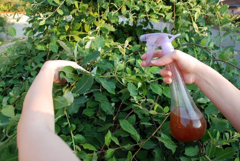 abono liquido y fertilizante