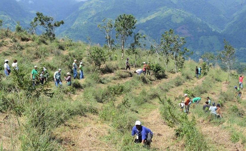 conservar suelos es de vital importancia