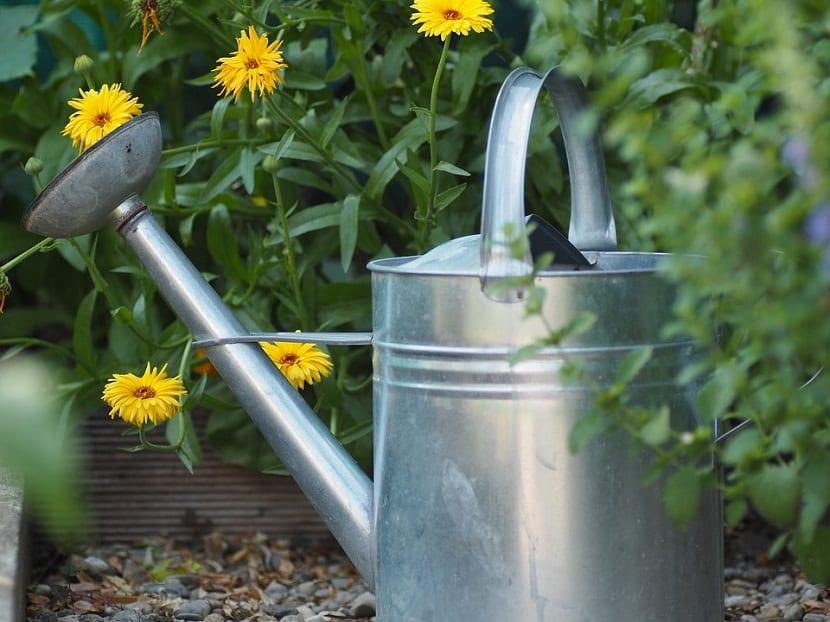 regadera metal para el jardín