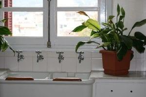Spatiphyllum en el baño
