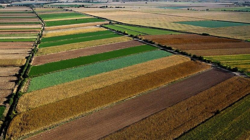características y tipos de suelo