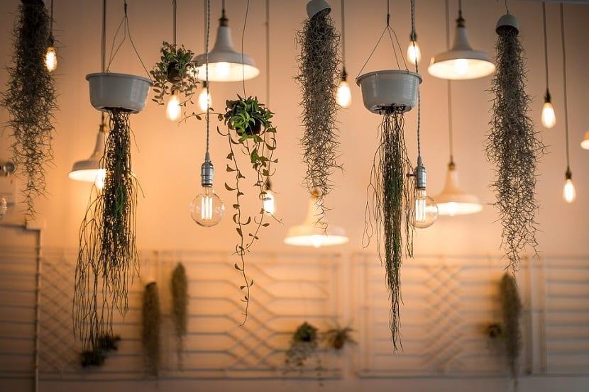 formas de decoracion colgante que podemos hacer