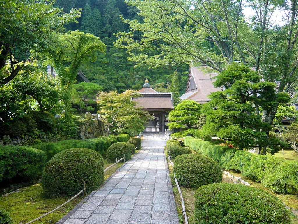 Precioso jardín japonés