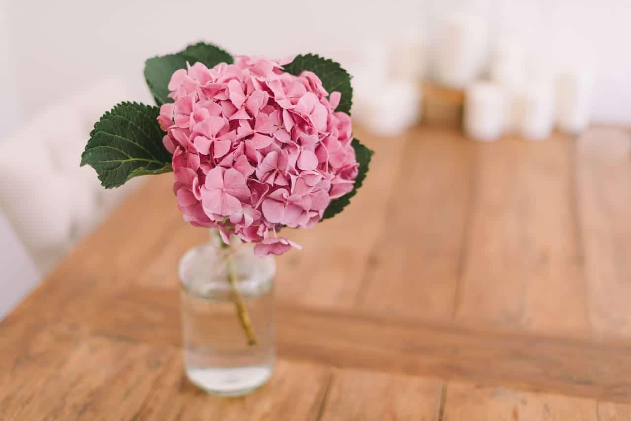 Flor de hortensia para decorar una mesa