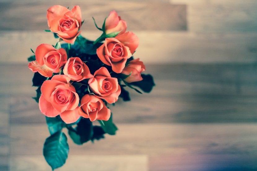 Utiliza las flores rojas para decorar mesas