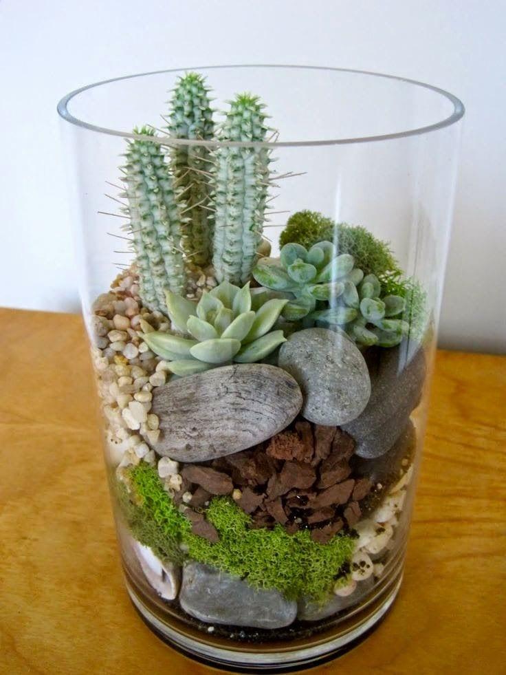 Qu plantar en vasos de cristal for Lilium in vaso