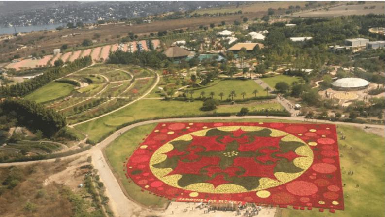 Alfombra floral en México