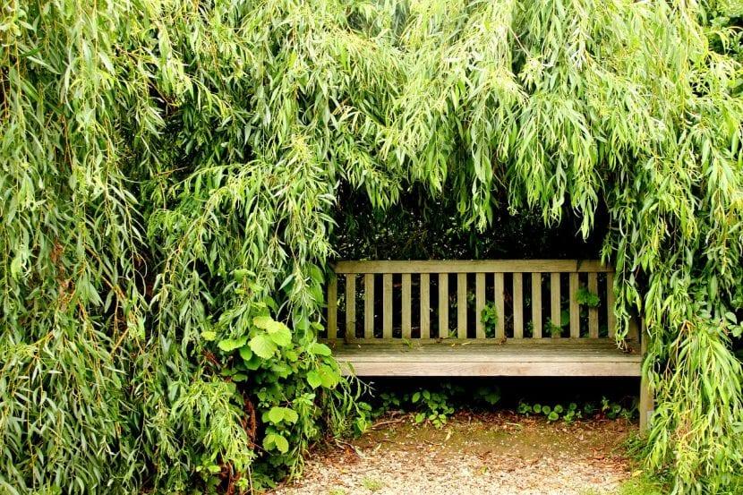 Un rincón escondido para disfrutar del jardín