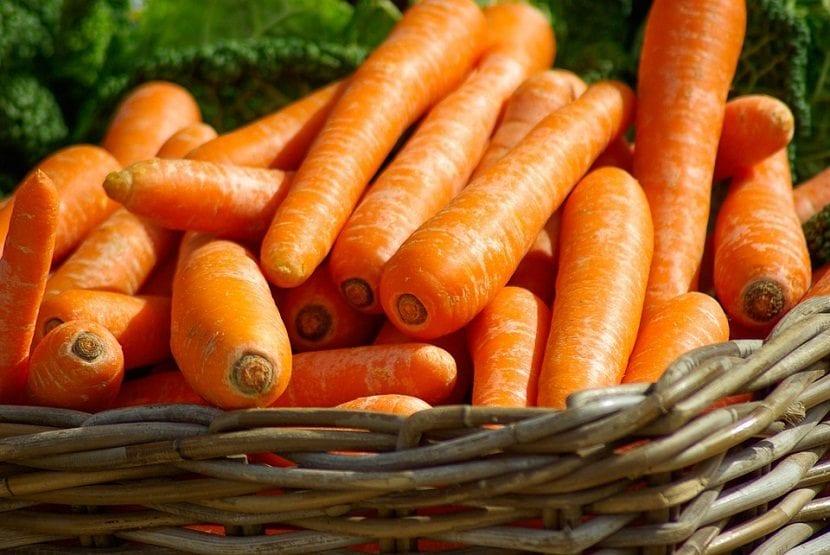 Las zanahorias son muy saludables