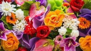 flores para decorar tu hogar