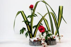 Ikebana con flores de orquídeas