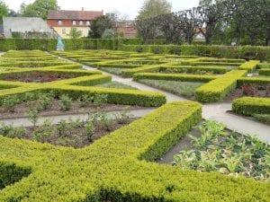 Un parterre de jardín botánico