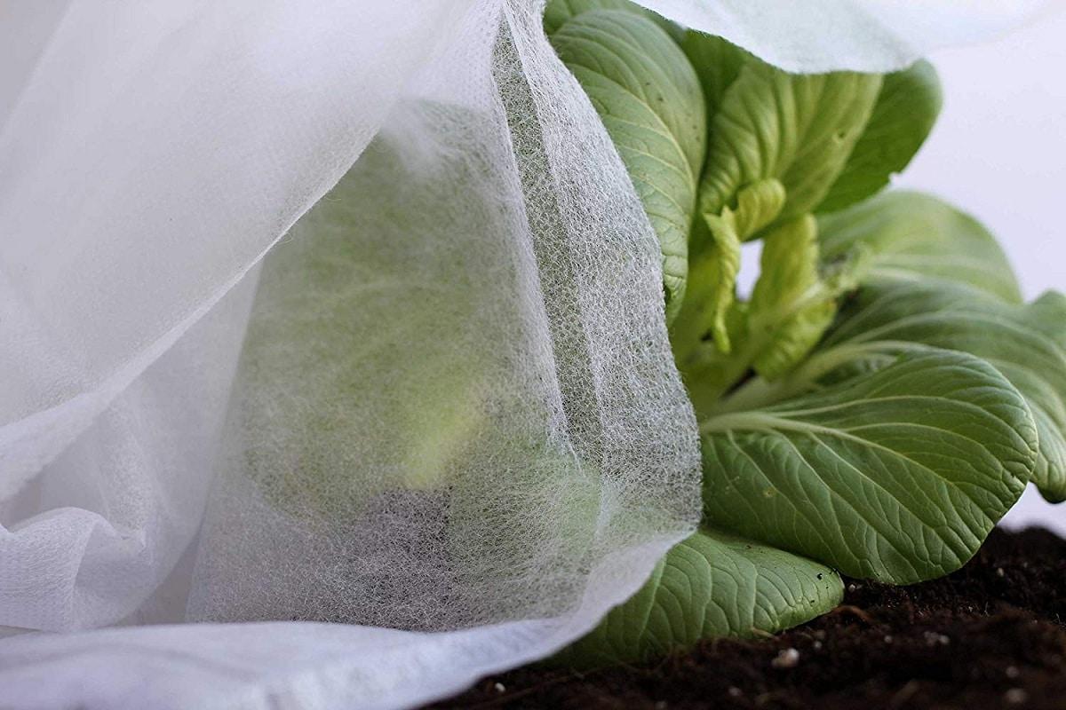proteger cultivos del frio