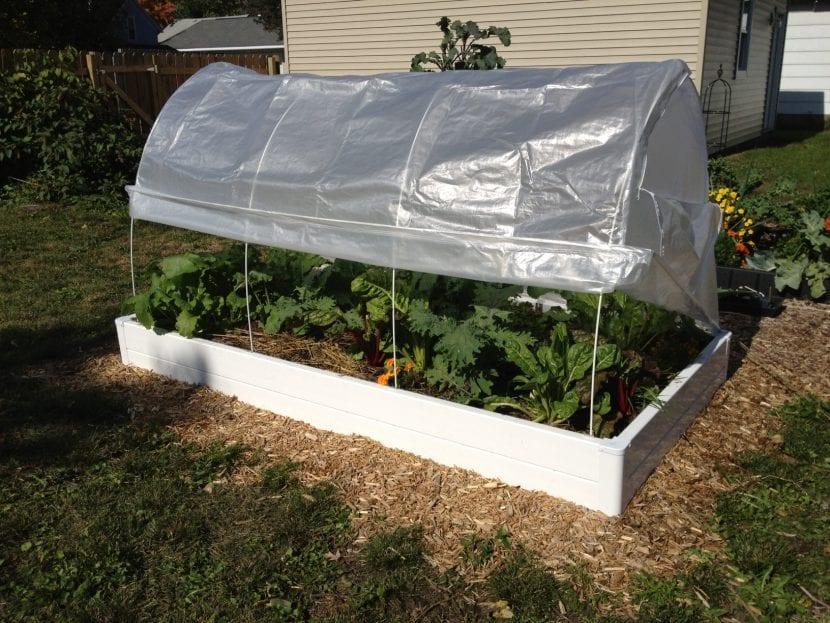 Cama fría para plantas