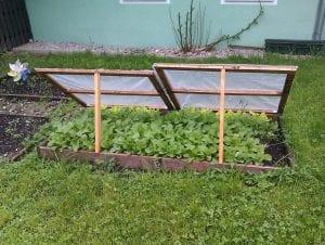 Cama fría para verduras