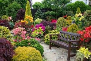 exterior con plantas y flores