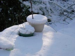 Macetas en el exterior en invierno