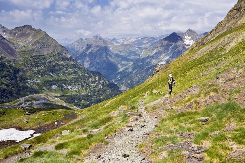 Hábitat de los Pirineos