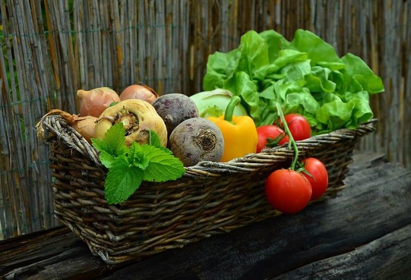 Verduras de estación