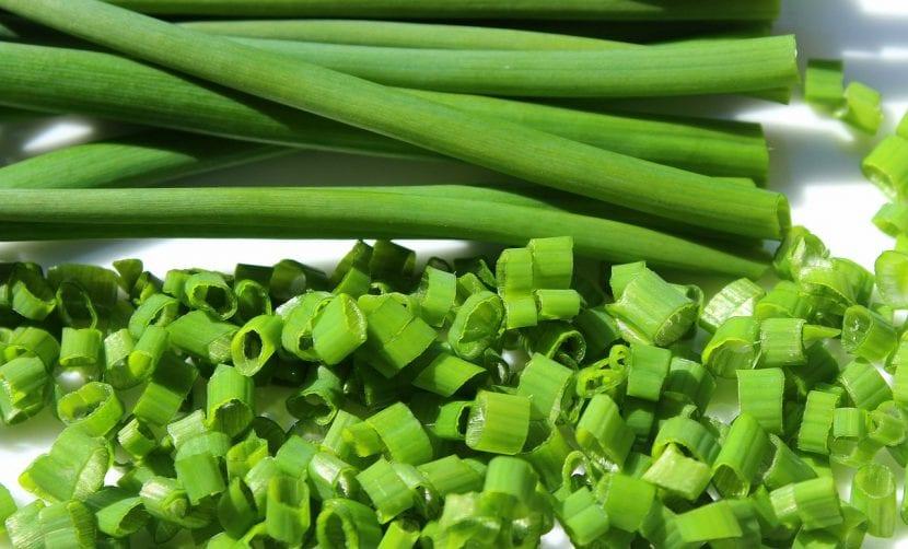 El cebollín o cebollino es una hierba muy útil