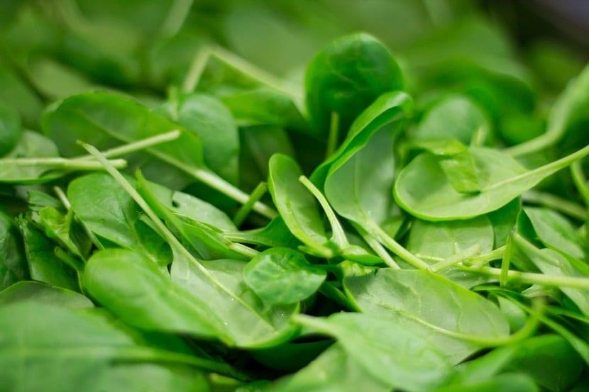 La espinaca es una de las plantas herbáceas que tiene la capacidad de ser anual