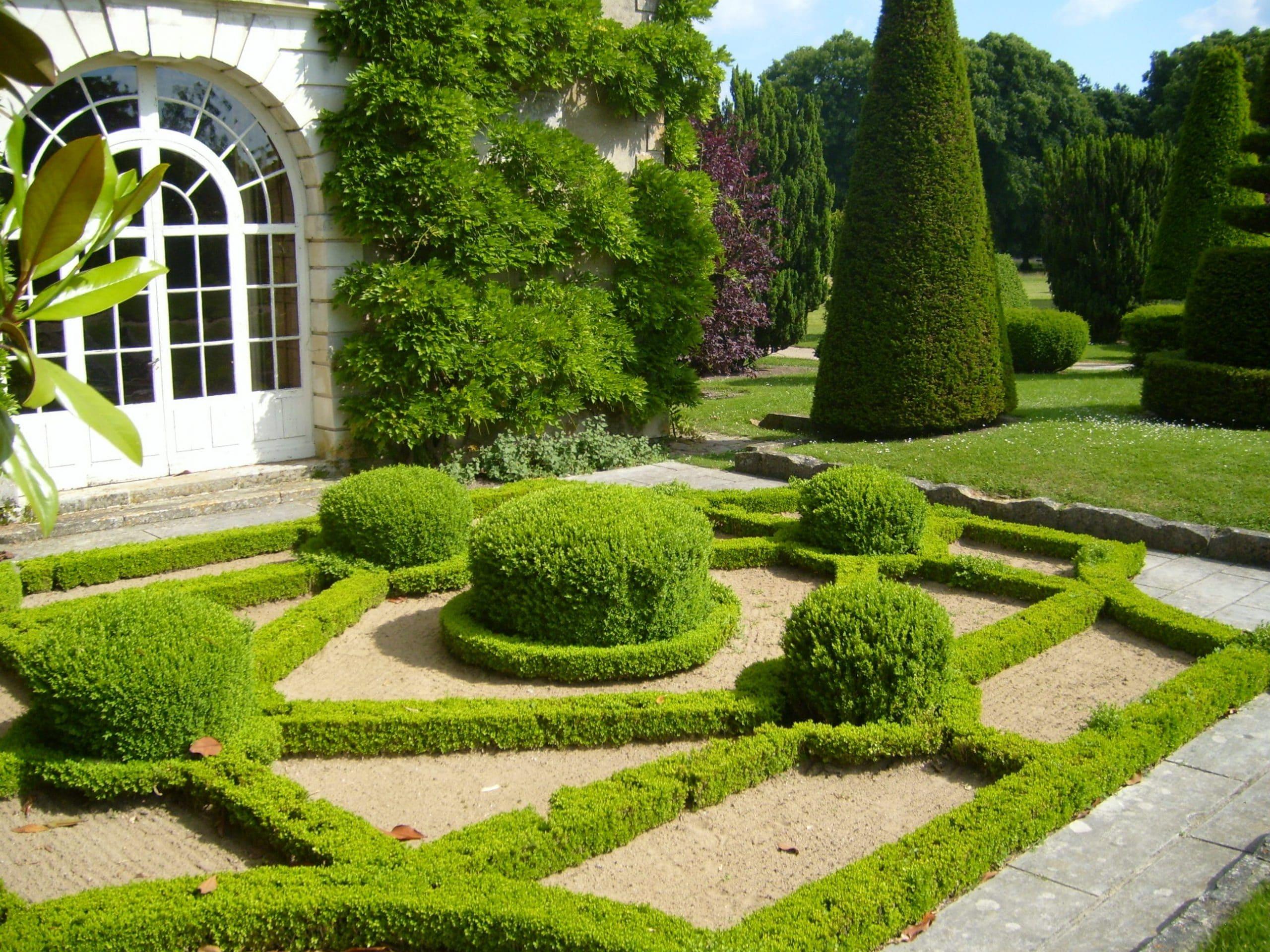 Plantas de un jardín francés