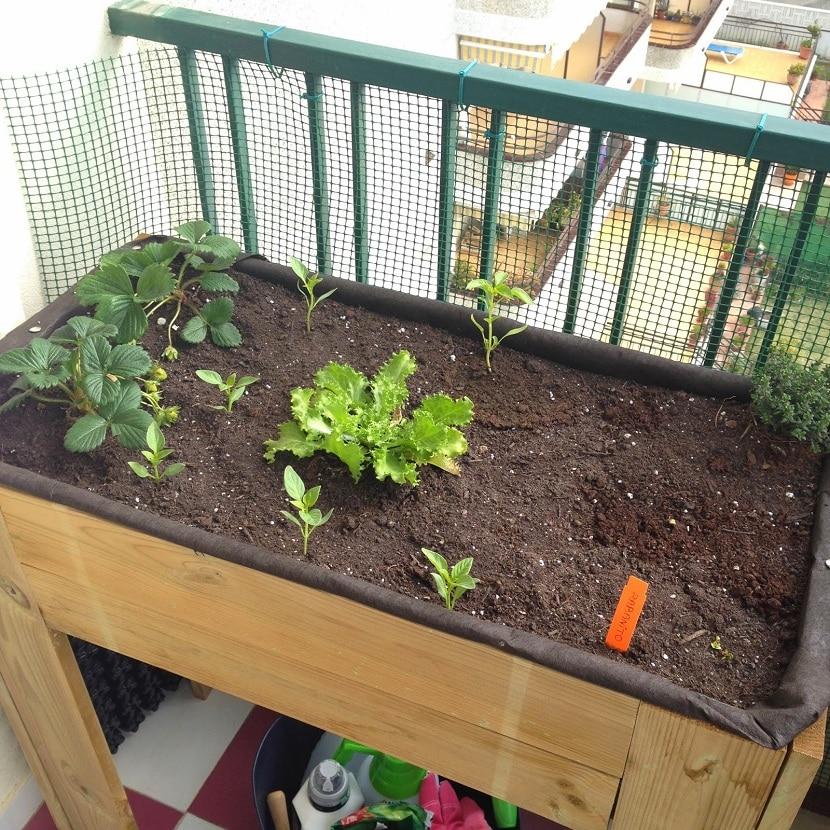 Qu es y c mo se hace una mesa de cultivo - Drenaje mesa de cultivo ...