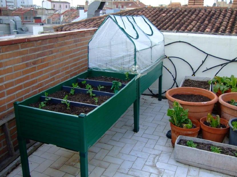 mesa de cultivo hidroponico