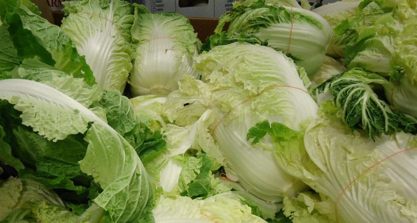 La col china se puede usar en ensaladas