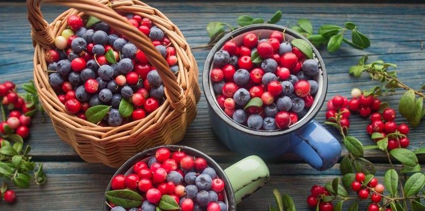 Arándanos rojos y azules