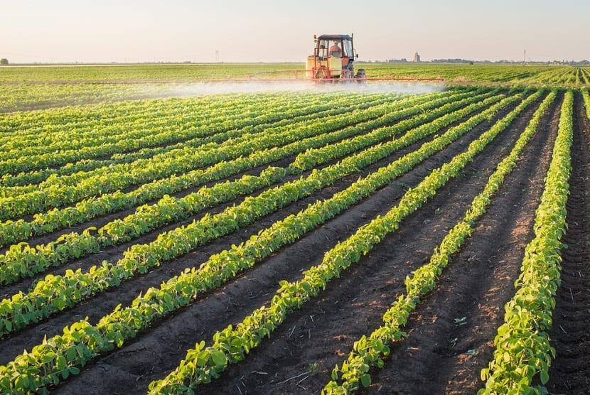 La mayoría de las plantas pueden tolerar un amplio rango de pH en el cultivo en solución, pero no pueden tolerar un amplio rango de acidez en el suelo