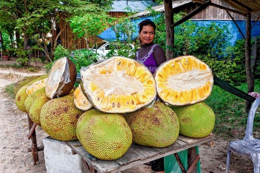 beneficios del fruto de la Durian