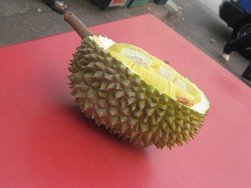 Características del Durian
