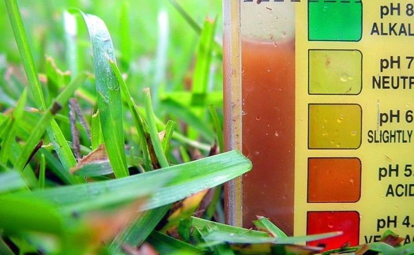 importancia del ph en suelos