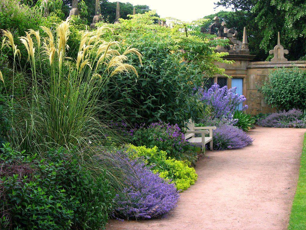 El jardín debe de tener plantas que destaquen