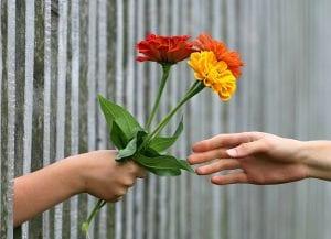 las mejores flores para regalar en un cumpleanos
