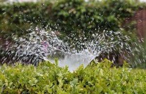 el riego automático es la mejor manera de suministrar agua a todo el jardín.