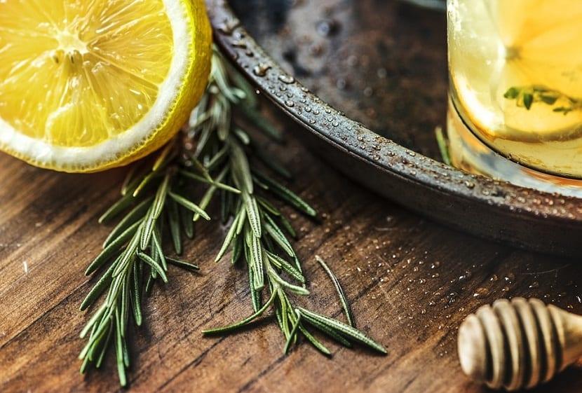 cultivar el tomillo limon