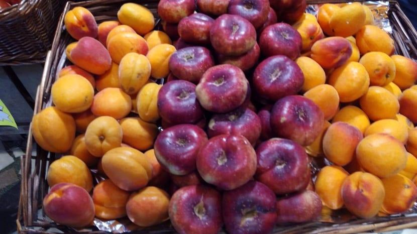 variedades de platerina