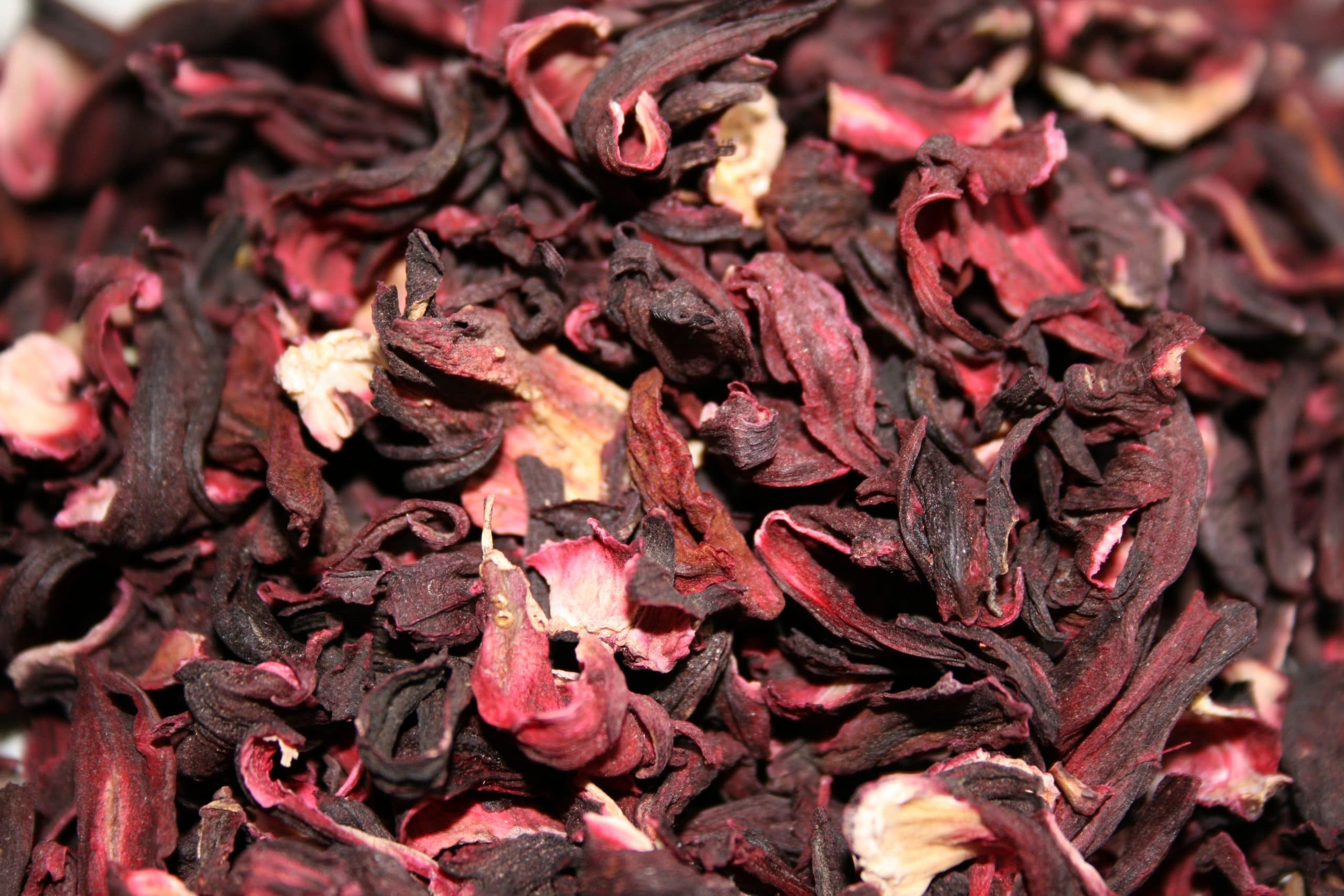 El Hibiscus sabdariffa se toma en infusión