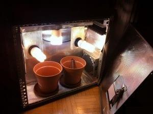 macetas para colocar plantas dentro del interior de un pc