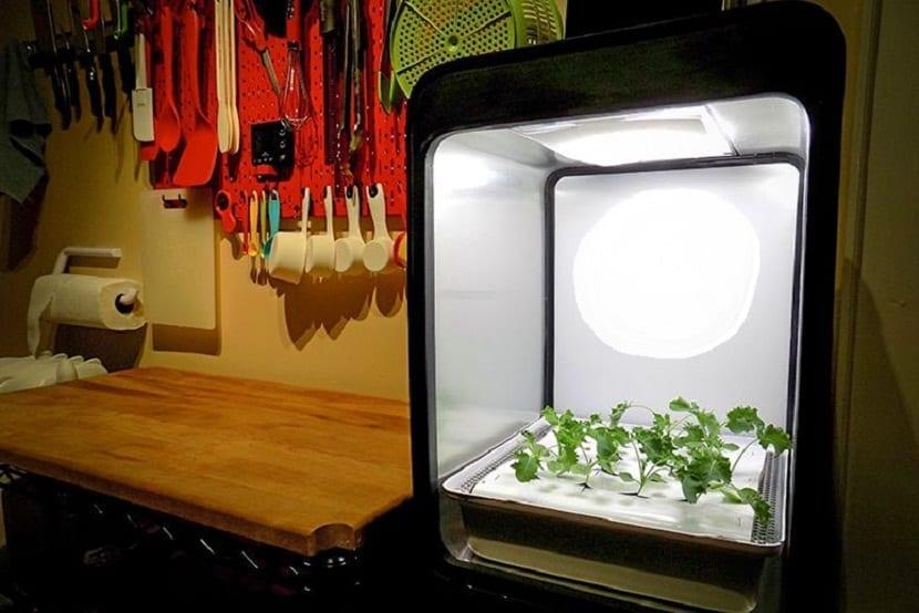 plantas dentro de un pc y con luz para que crezcan mas rapido