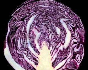 La coliflor morada se puede cultivar en maceta