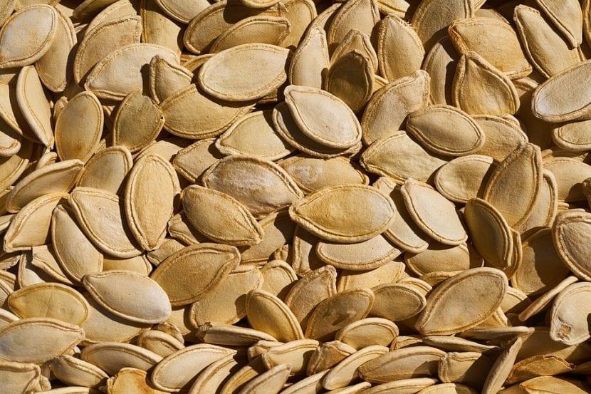 Cuándo y cómo se siembran las semillas de calabaza
