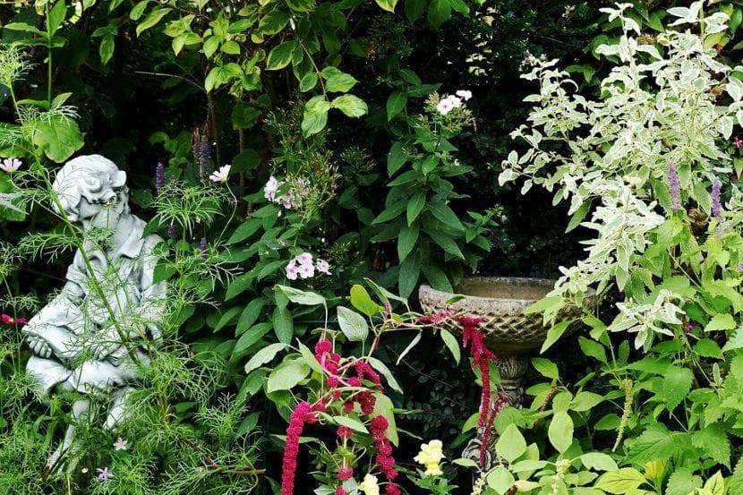 El jardín se disfruta más con las herramientas adecuadas