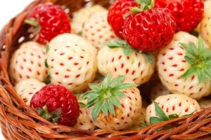 fresas blancas y rojas en cesta